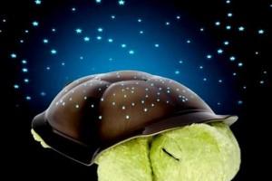 Magic-Twilight-Turtle-LED-Night-Light-Twilight02-