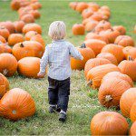 Get the perfect pumpkin patch photos by Katie Starr Photography