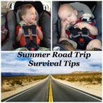 Summer Road Trip Survival Tips