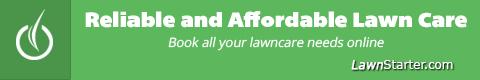 austin-lawn-mowing
