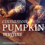 Cinnamon Pumpkin Muffins Recipe