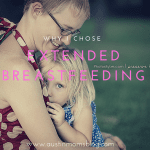 Yes, That's a Toddler On My Breast: Extended Breastfeeding