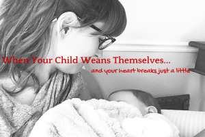 When Your Child Weans Themselves- catia holm