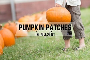 austin-moms-blog-pumpkin-patches-austin