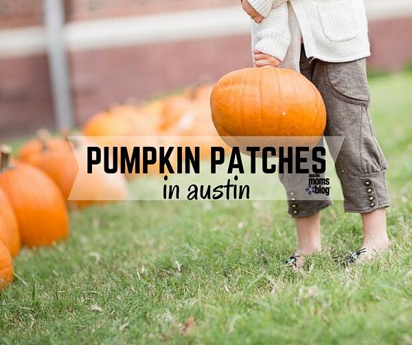 austin-moms-blog-pumpkin-patches-austin