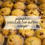 Pumpkin Chocolate Chip Muffins {Recipe}