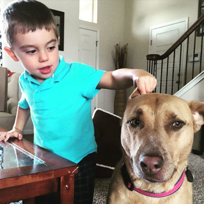 Zoe was a rescue that came along before Mason, but she has taken him and all his curiosity better than we ever could have imagined.