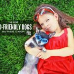 Best Kid-Friendly Dogs (and Where to Adopt Too!)