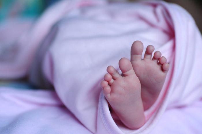 baby-1178539_1920