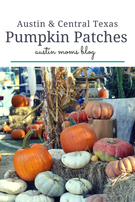Austin and Central Texas Pumpkin Patches | Austin Moms Blog