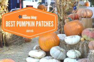 best-austin-pumpkin-patches