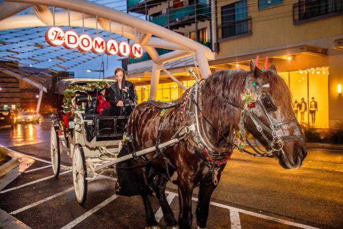 domain_horse