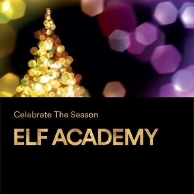 elf-academy