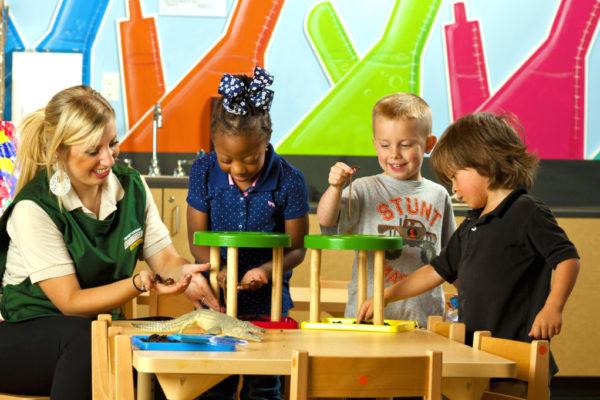 Children's Learning Adventure - 1