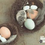 Celebrating Easter Without Religion