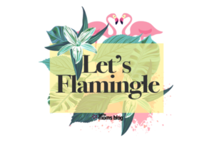 lets-flamingle-cover