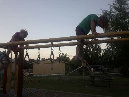 Walking Monkey Bars