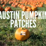 Best Pumpkin Patches in Austin