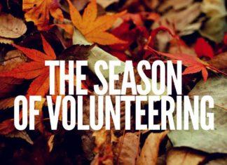 volunteering in Austin