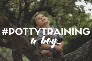 potty training a boy