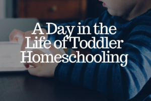 AMB-A Day in the Life of Toddler Homeschooling