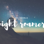 We Have A Night Roamer