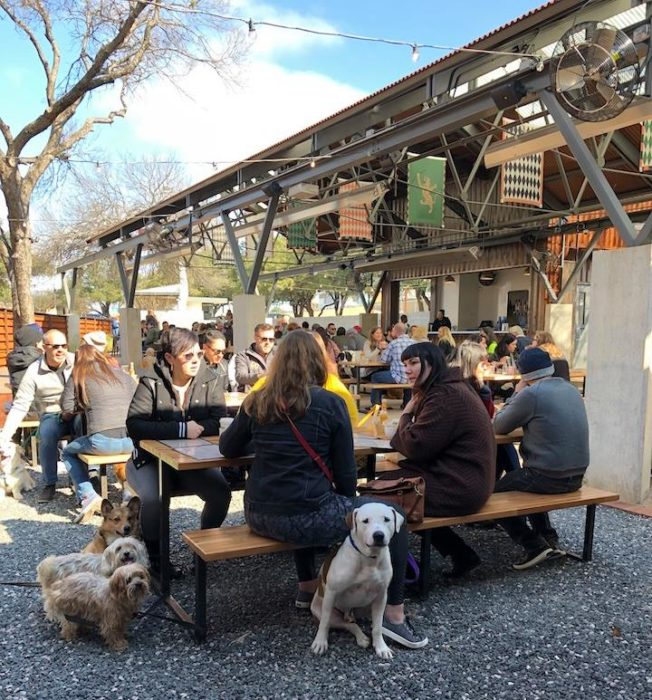 people eating brunch with their dogs at Easy Tiger in Austin, Texas